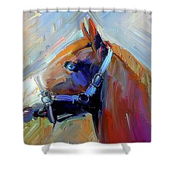 Painted Color Horse Shower Curtain