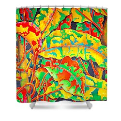 painted Crotons Shower Curtain by Daniel Jean-Baptiste