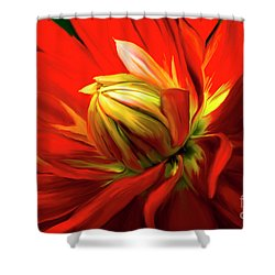 Painted Dahlia In Full Bloom Shower Curtain