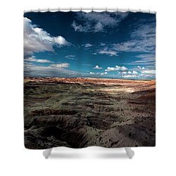 Painted Desert Shower Curtain by Charles Ables