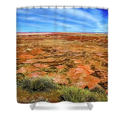 Painted Desert Early Spring Shower Curtain