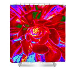 Carnival Colors Shower Curtain