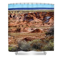 Painted Desert In Winter Shower Curtain