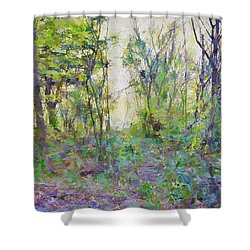 Painted Forrest Shower Curtain