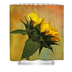 Painted Golden Beauty Shower Curtain by Judy Vincent