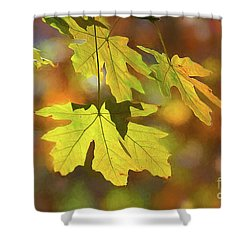 Painted Golden Leaves Shower Curtain