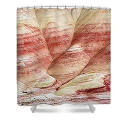 Shower Curtain featuring the photograph Painted Hill Bumps by Greg Nyquist