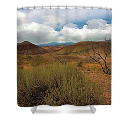 Painted Hills Landscape In Central Oregon Shower Curtain