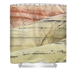 Shower Curtain featuring the photograph Painted Hills Ridge by Greg Nyquist