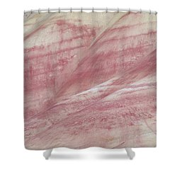 Shower Curtain featuring the photograph Painted Hills Textures 1 by Leland D Howard
