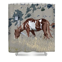 Painted Horse Shower Curtain by Steve McKinzie