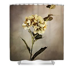 Painted Hydrangeas Shower Curtain