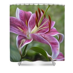 Painted Lily Shower Curtain by Jewels Blake Hamrick