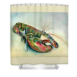 Painted Lobster Shower Curtain