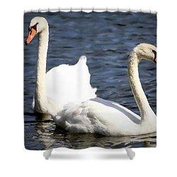 Painted Mute Swans Of Lake Junaluska North Carolina II Shower Curtain