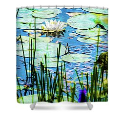 Shower Curtain featuring the mixed media Painted North American White Water Lily by Onyonet  Photo Studios