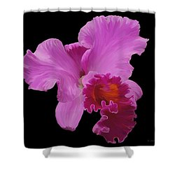 Shower Curtain featuring the photograph Painted Orchid by Phyllis Denton