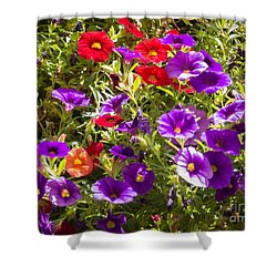 Painted Pansies Shower Curtain by Bob and Nancy Kendrick