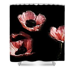 Painted Peach Poppies Shower Curtain
