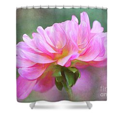Painted Pink Dahlia Shower Curtain