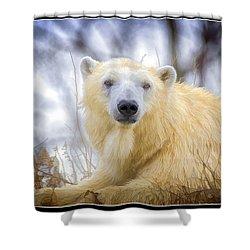 Painted Polar Bear  Shower Curtain by LeeAnn McLaneGoetz McLaneGoetzStudioLLCcom