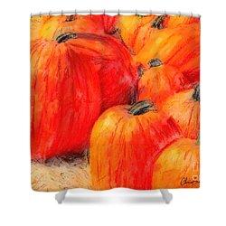 Painted Pumpkins Shower Curtain
