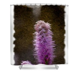 Painted Purple Flower Shower Curtain