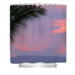 Shower Curtain featuring the photograph Painted Sky by Debbie Karnes