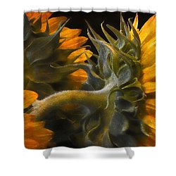 Shower Curtain featuring the photograph Painted Sun Flowers by John Rivera
