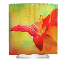 Painted Tammas Daylily Shower Curtain