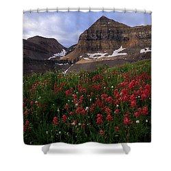 Painted Timpanogos Shower Curtain