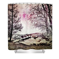 Painted Trees Shower Curtain by Judy Wolinsky
