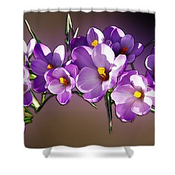 Shower Curtain featuring the photograph Painted Violets by John Haldane