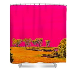 Painter Ridge Shower Curtain by Gillis Cone