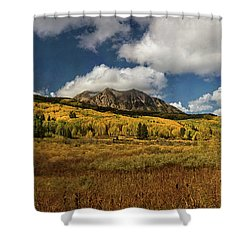 Painterly Kebler Pass Shower Curtain