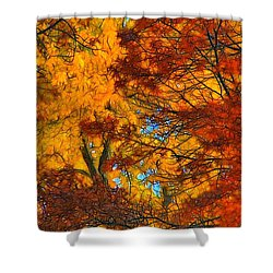 Painterly Shower Curtain by Lyle Hatch