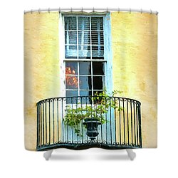 Painterly Window And Balcony Shower Curtain by Gary Slawsky