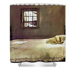 Painting Of The Print, Master Bedroom Shower Curtain