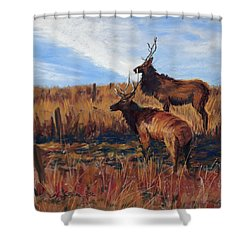 Pair O' Bulls Shower Curtain