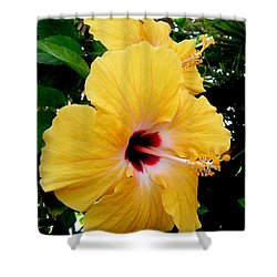 Pair Of Beauties Shower Curtain