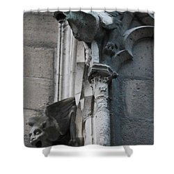 Pair Of Griffons Of Notre Dame Shower Curtain