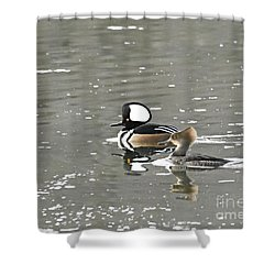 Shower Curtain featuring the photograph Pair Of Hooded Mergansers by Larry Ricker