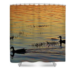 Pair Of Paddlers Shower Curtain by William Bartholomew
