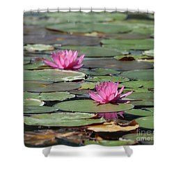 Pair Of Pink Pond Lilies Shower Curtain