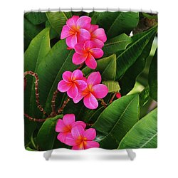 Shower Curtain featuring the photograph Pairs Of Pink Plumeria by Craig Wood