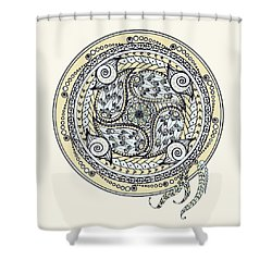 Paisley Balance Mandala Shower Curtain
