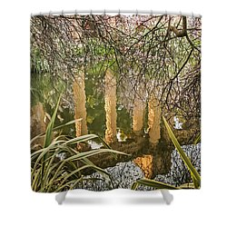 Shower Curtain featuring the photograph Palace Grounds 2007 by Kate Brown