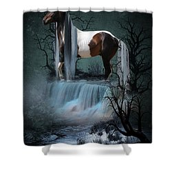 Pinto  Falls Shower Curtain