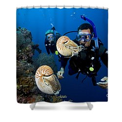 Palau Underwater Shower Curtain by Dave Fleetham - Printscapes