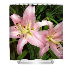 Pale Pink Beauties Shower Curtain